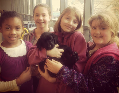 Guide dog puppy Granola meets some young admirers