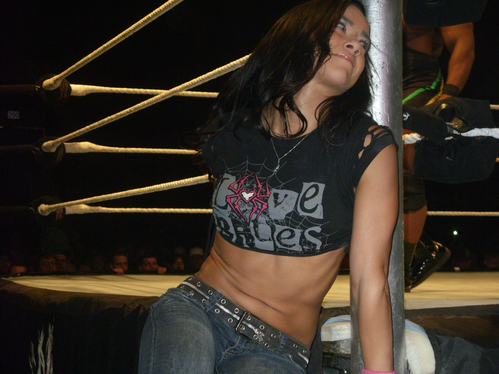 Wwe Aj Lee Sexiest Moments Wwe diva aj lee and the rest