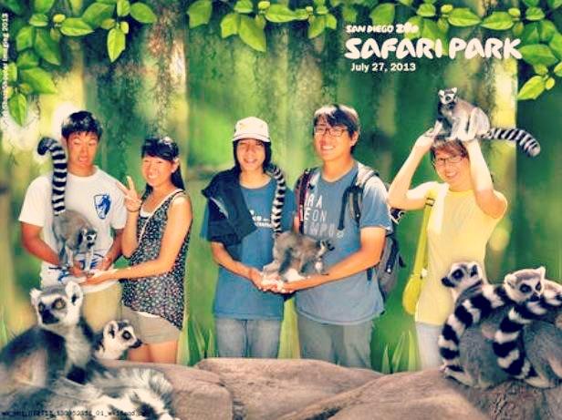 San Diego Safari Park // Lemur Picture