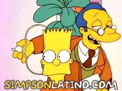 Los Simpson 1x02