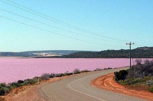 8 Danau Pink Terindah di Dunia: Danau Masazirgol, Azerbaijan