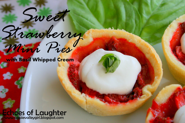 Canada Day Party Guide- Ideas & Recipes - Echoes of Laughter