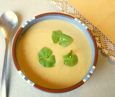 Curried Roasted Parsnip and Apple Soup