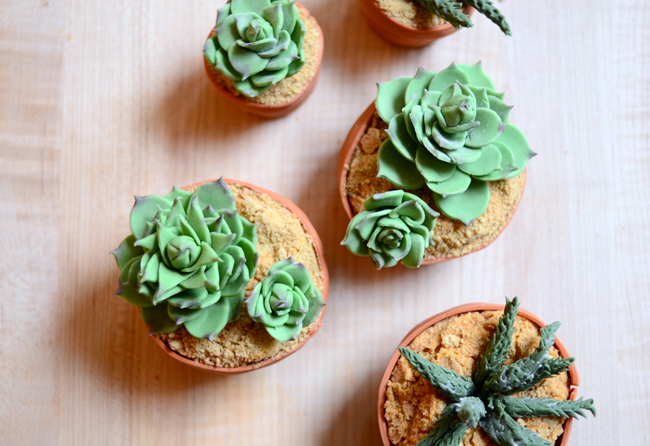 Pixel Whisk Succulent Cupcakes