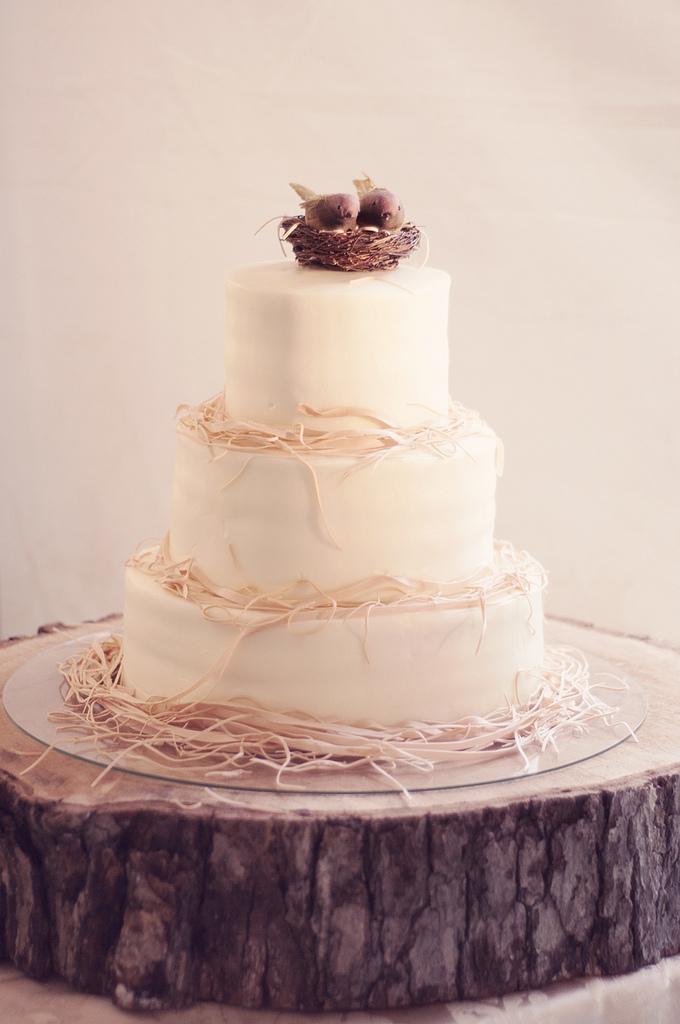 Tortas Para Matrimonio Rustico : Muyameno tortas de boda rusticas parte