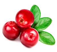 Beurre de cranberry