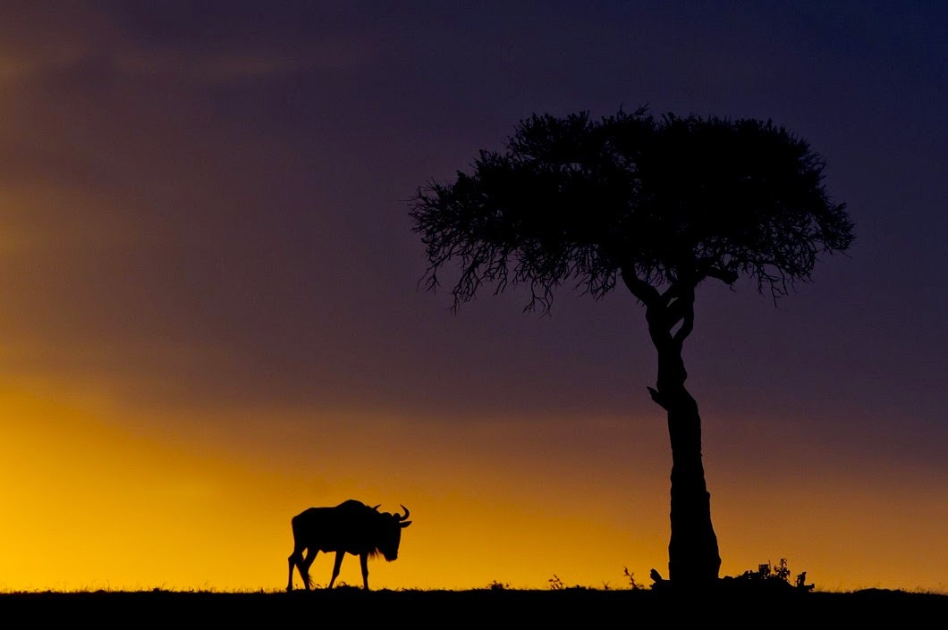 Stunning African sunsets