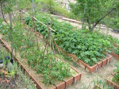 El Huerto de la Discordia: La preparación del terreno: Los bancales