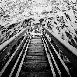 Black & White - фотография