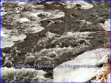 ice cold bubbly creek water photo image