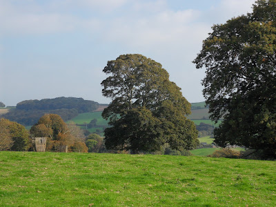 Fields approaching Lerryn Cornwall