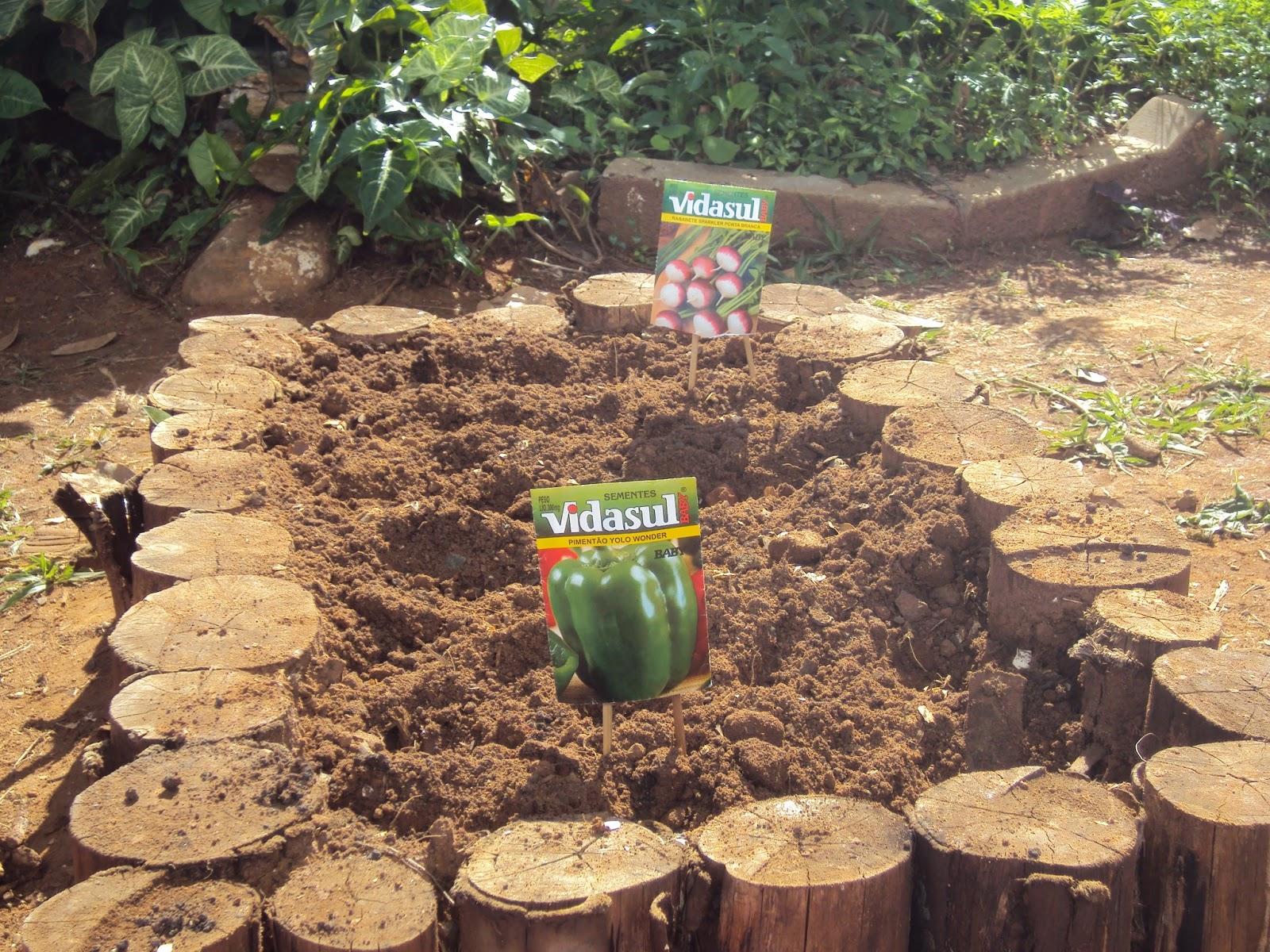 horta e jardim juntos:Jardins dos Sentidos: UMA MANHÃ NA HORTA E NO JARDIM