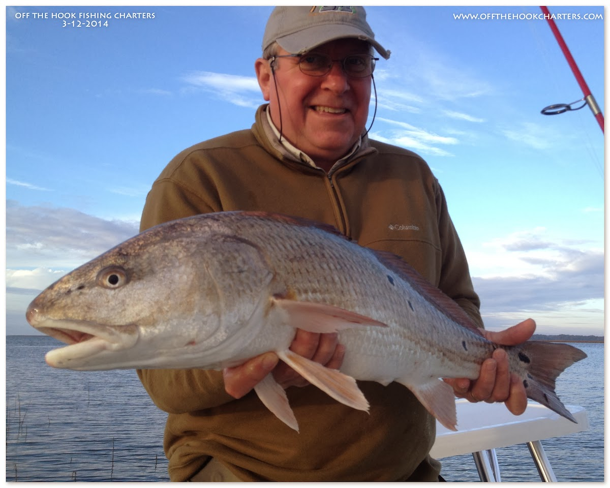 Another stoked client catching their first redfish we got for Hilton head inshore fishing