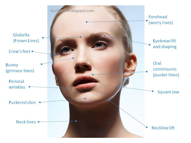 Botox: Cosmetic and Therapeutic