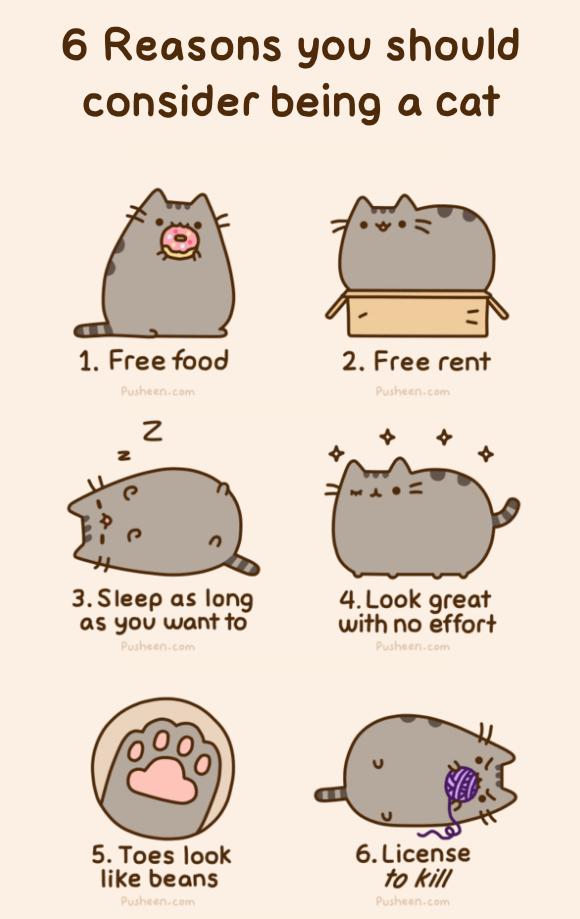 Happiness Is Have You Met Pusheen The Cat