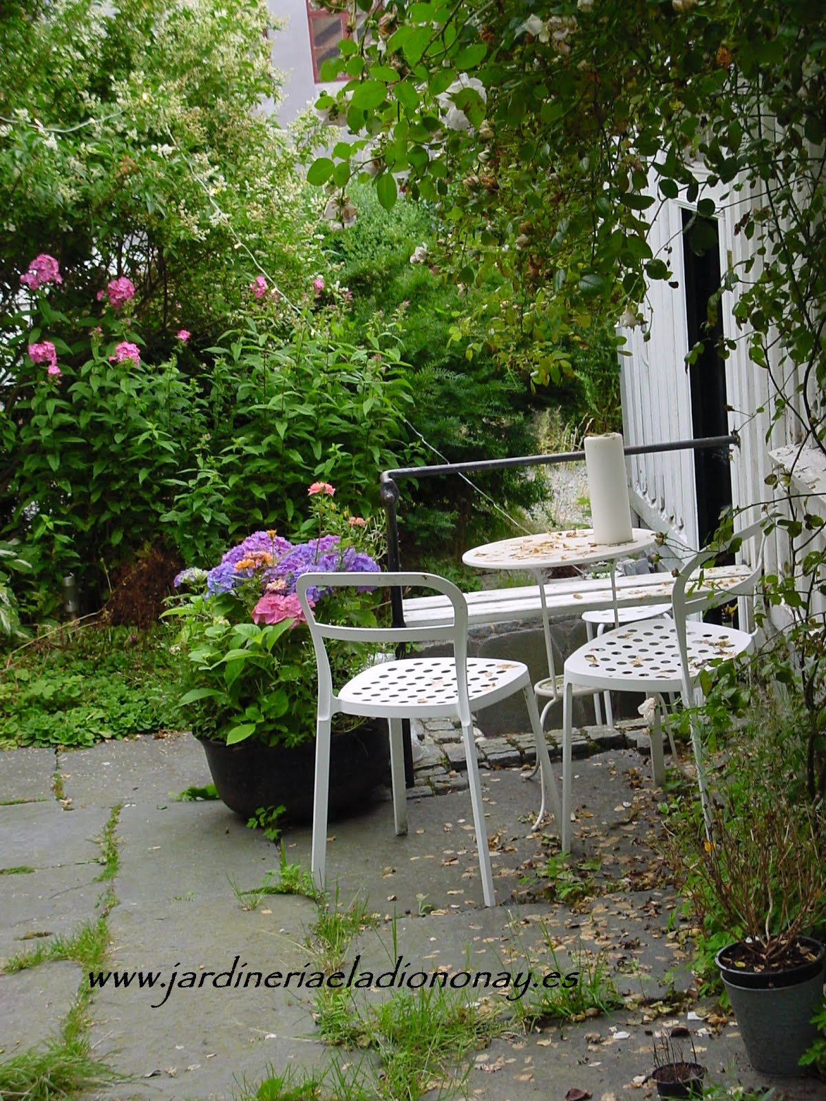 Jardineria eladio nonay un jard n poco mon tono - Jardineria eladio nonay ...