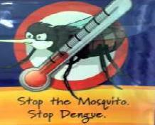 tungkol sa dengue Ang sangkap na ito na mabibili sa mga botika ay mahusay na pantaboy at pamatay ng lamok na nagdadala ng dengue sa loob ng bahay tungkol sa amin.