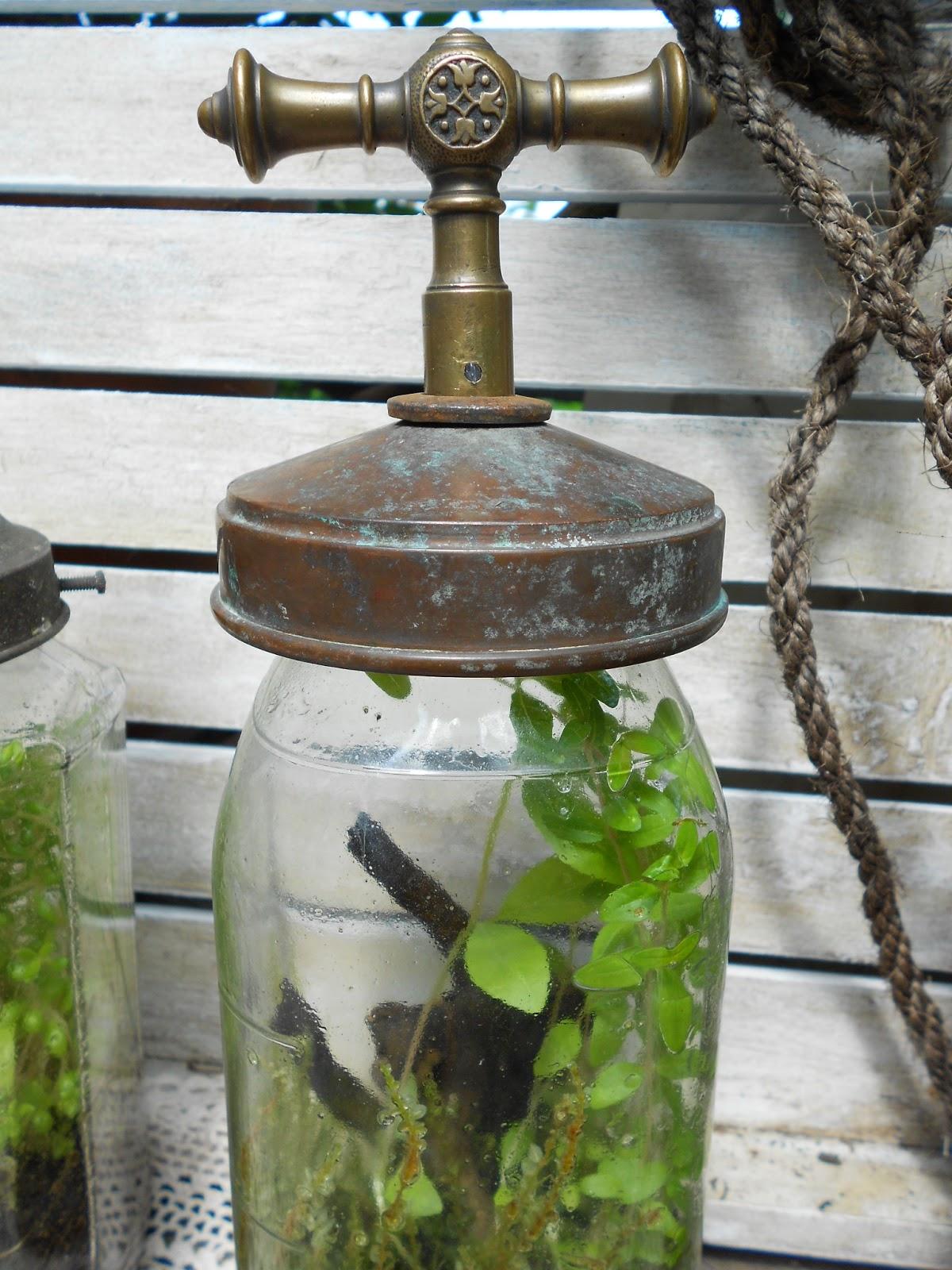 vintagesavonette sommer im einmachglas glass captured summer recycled glass. Black Bedroom Furniture Sets. Home Design Ideas
