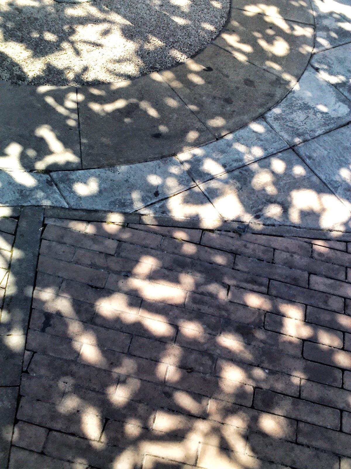 supervisar la vía desde la sombra