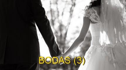 Ver fotos de tortas decoradas de BODAS (3)