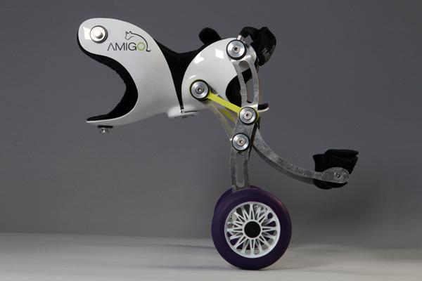 Rehabilitaci n y medicina f sica mirando al futuro amigo una silla de ruedas para perros - Ruedas para sillas de ruedas ...