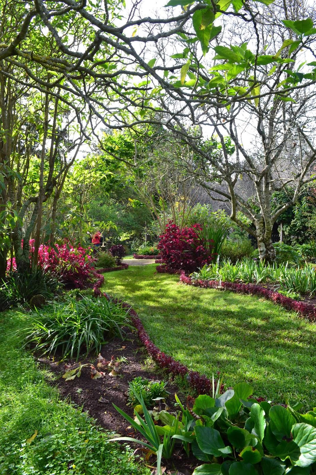 Blandys garden, Madeira