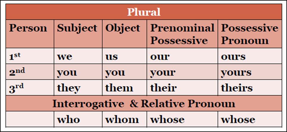 curriculum vitae  curriculum vitae singular or plural