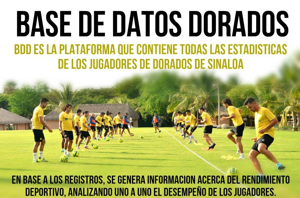 BASE DE DATOS DORADOS