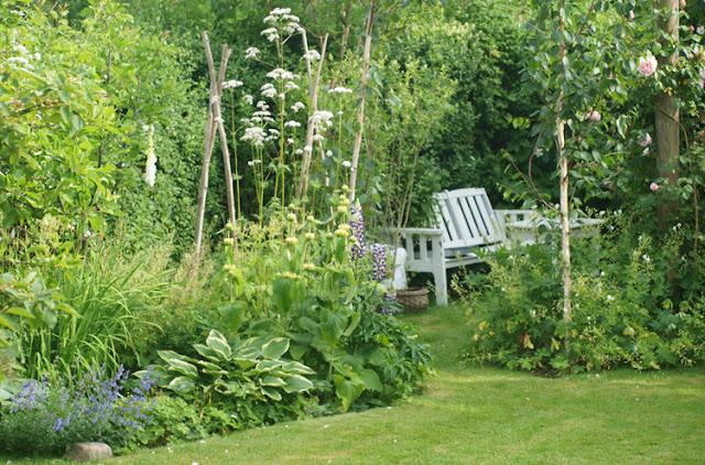 Hvid bænk omgivet af frodige bede med hårdføre og livskraftige stauder og buske