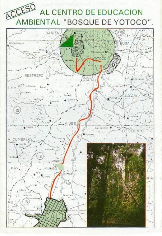 RESERVA NATURAL DE YOTOCO-VALLE DEL CAUCA