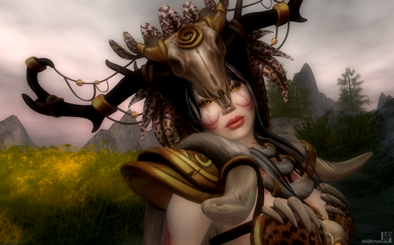 Second Life Role-Play Fashion Review. Shaman