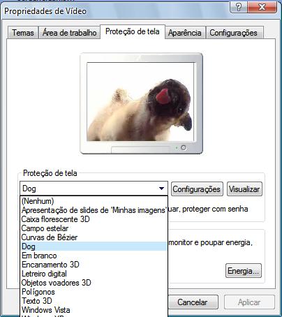 como-por-animação-flash-swf-na proteção-de-tela-windows