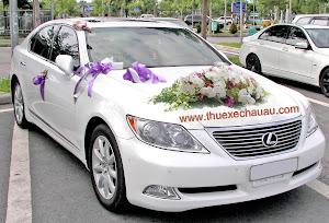 Hoa xe cưới MS004