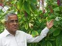 Raja thatha's blogs
