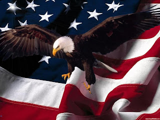 download awesome eagle and american flag hd wallpaper 2013