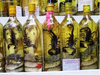 Las extrañas bebidas de vietnam(vino de serpiente)