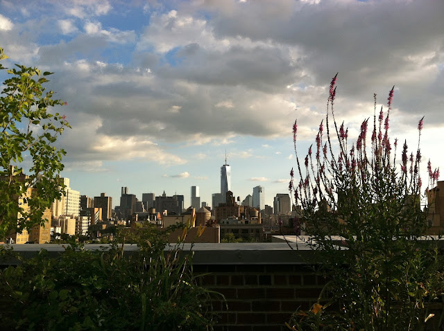 Freedom-Tower-as-seen-from-the-West-Village