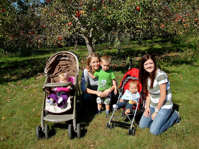 We went a beautiful apple orchard. It was so much fun, now we get to try to make an apple pie.