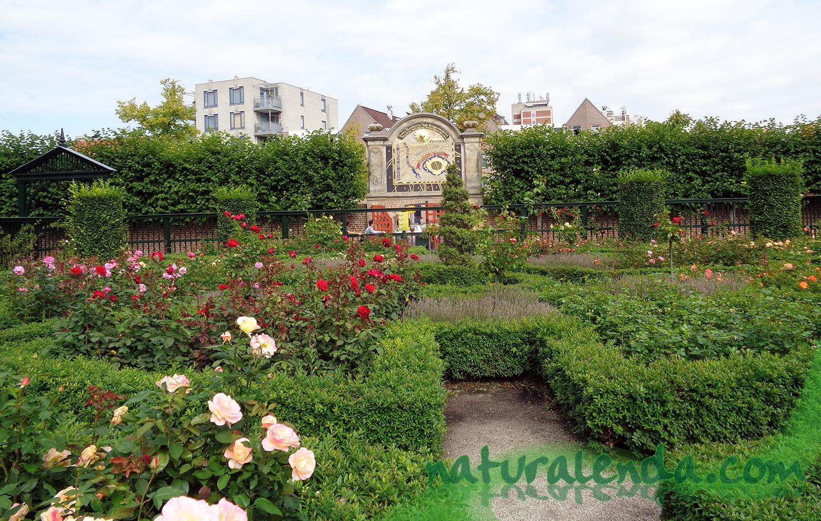 el jardin de la princesa de Groningen