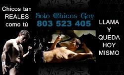 LINEA GAY 803523405