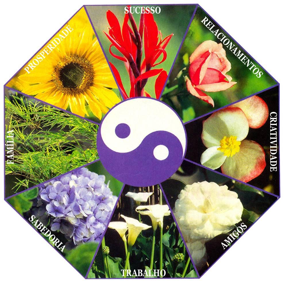 Pr beleza natural flores fonte de energia e purifica o for Flores para el hogar feng shui