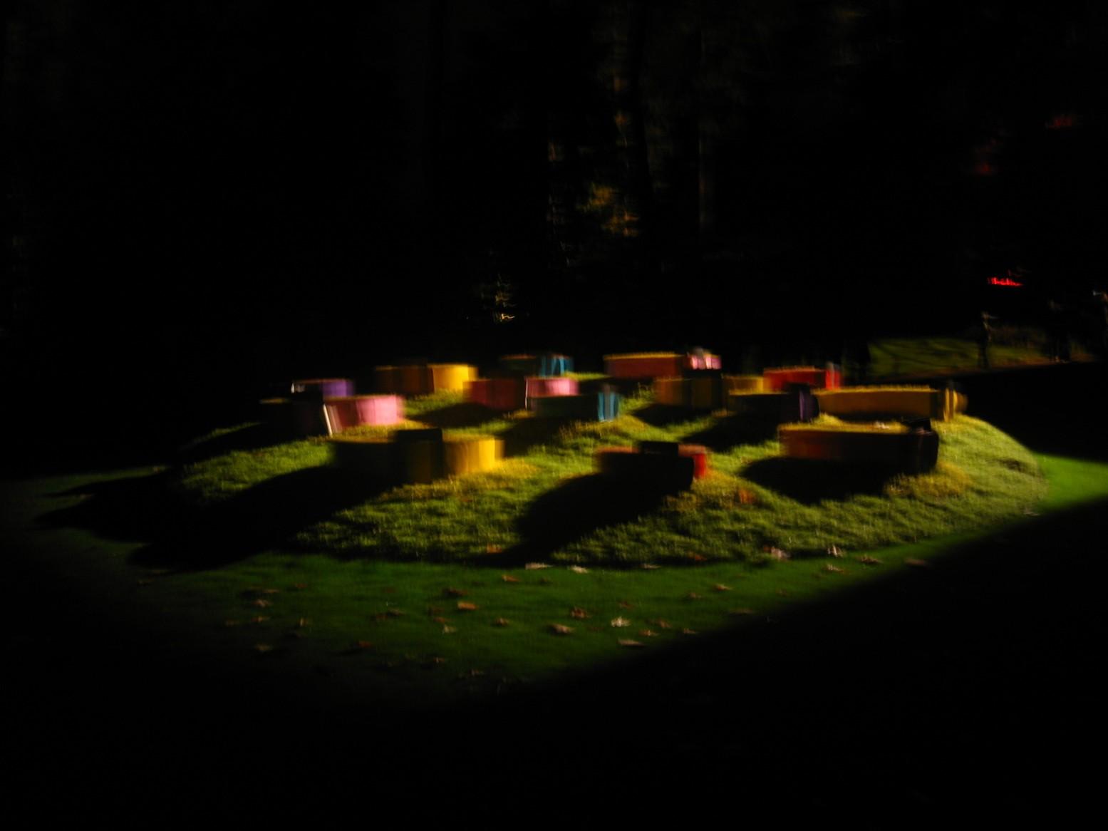 Ephémères : Le jardin des plantes de Nantes par une nuit d\'octobre