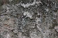stone wall texture