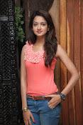 Cute Shanvi Glamorous Photos Gallery-thumbnail-7