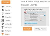 blogger paneli