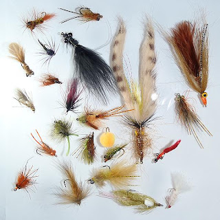 2012 Carp Fly Swap Line-Up