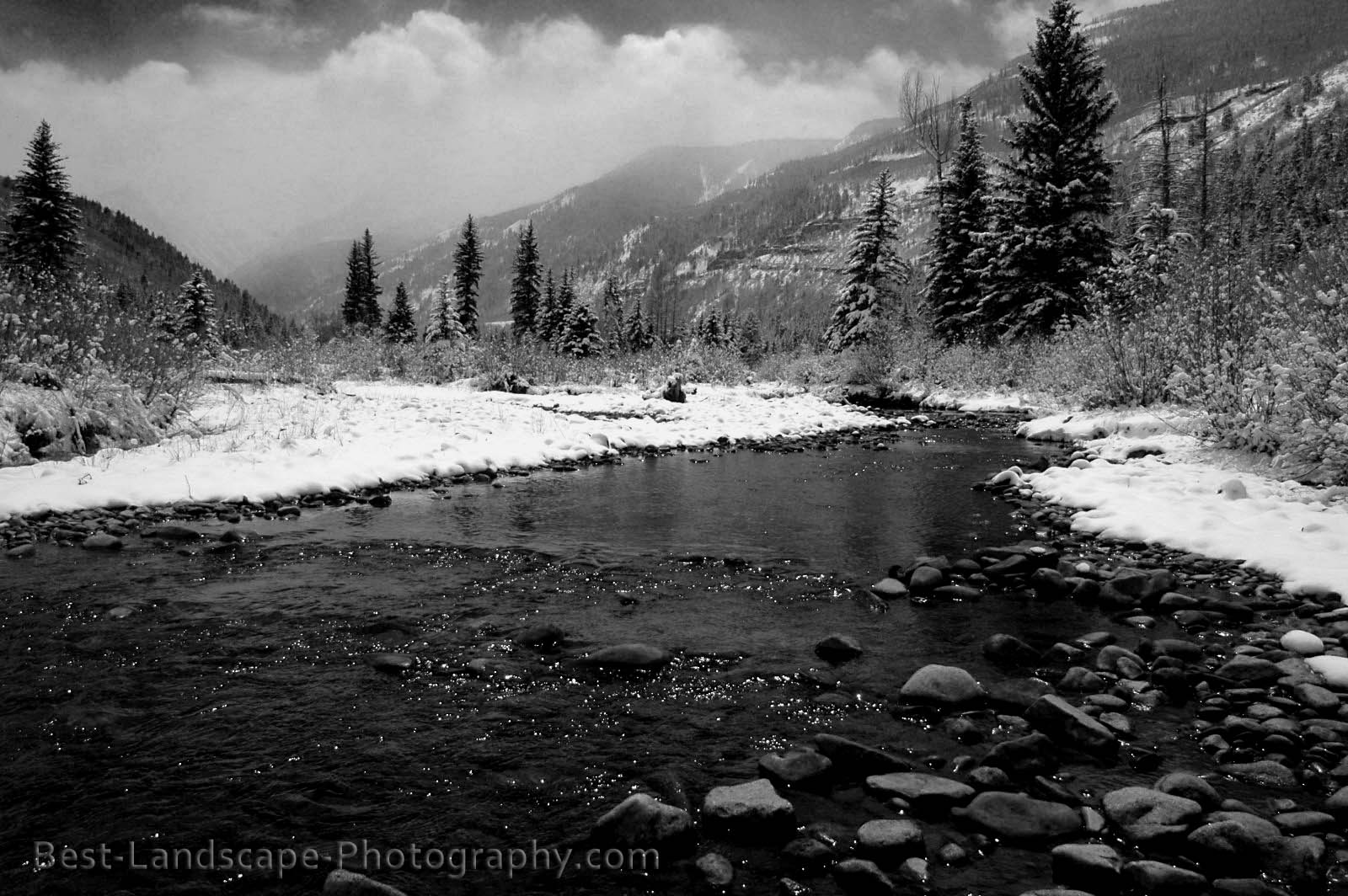 Landscape And Nature Photography Spring Snowstorm In Black Amp White