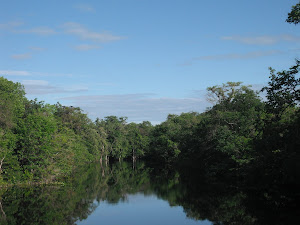 Rio Maracá