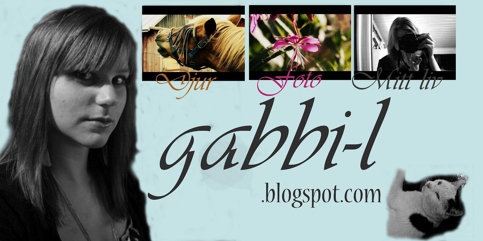 My life as Gabri