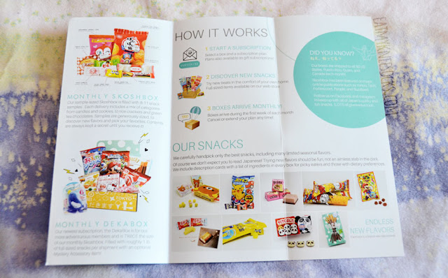 Skoshbox's DEKAbox includes a little brochure about their products and services, including their various subscription box plans.